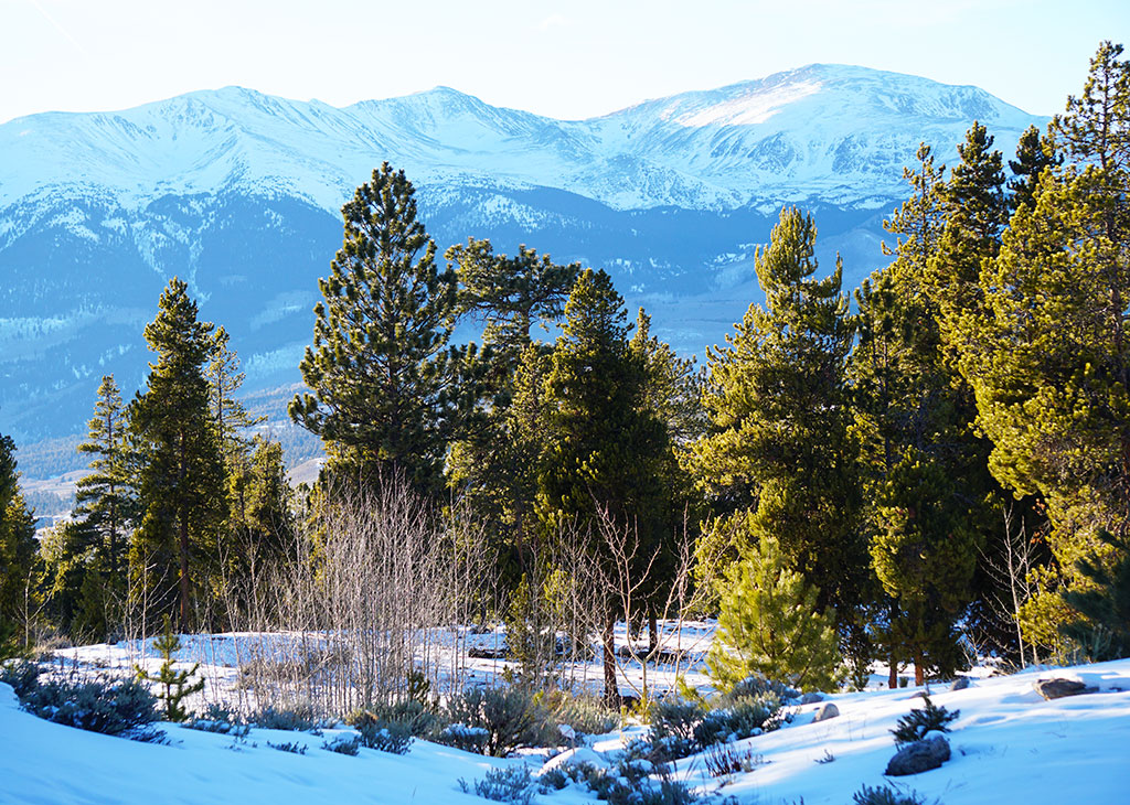 Snowy Mount Elbert